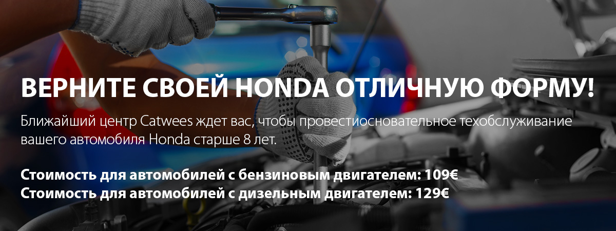 Catwees_Honda_8+_1200x450_01_1_rus